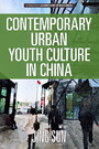 Contemporary Urban Youth Culture in China - A Multiperspectival Cultural Studies of Internet Subcultures